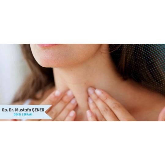 Tiroid Hastalıkları Ve Guatr Sorunu